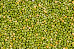 Background with green peas Stock Images