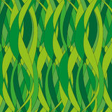 Background of green plants. Vector background of green plants Royalty Free Stock Photography