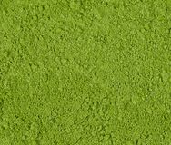 Background of green powder, border surface close up of powdered stock photo