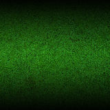 Background. Green stone It is a good grass Royalty Free Stock Photo