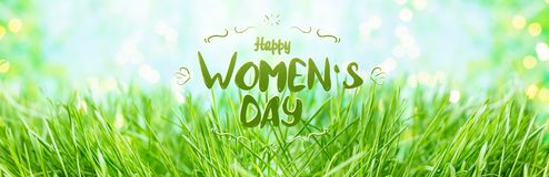Background of green summer grass With the lettering Happy Women`s Day ,dew and bokeh stock photography