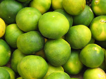 Background from green tangerines. Green mandarines in the Turkish market Stock Photography