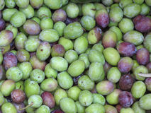 Background from green and violet olives. Green and black olive background ready for press to oil Royalty Free Stock Images