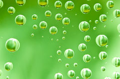 Background of green water drops. Background of green big and small water drops Stock Photography