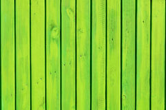Background of the green wooden fence Stock Photography