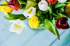 Background, greeting card: bouquet of multicolored tulips on a light background. Layout, mocap, for your text mother\'s day, copys. Floral, spring Background Stock Image