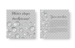 Pattern with drops of dew. Background greeting card in an ecological style with shiny drops of dew Royalty Free Stock Photo