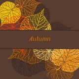 Background, greeting card with stylized autumn Royalty Free Stock Photo