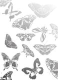 Background with grey butterflies Stock Photography