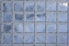 Background grid covered with snow. Background a grid covered with snow and hoarfrost Royalty Free Stock Photos