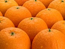 Group of orange fruits Stock Photos