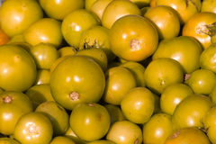 Background of groups immature tomato market. Agriculture Stock Photos