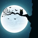 Background for Halloween. Black owl on the tree. Bats fly against the background of the full moon. Vector Stock Photography