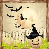 Background for Halloween pumpkin and witch Royalty Free Stock Photo
