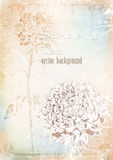 Background hand drawing of chrysanthemum.vector illustration Royalty Free Stock Images