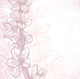 Background with hand drawn cherry blossoms Royalty Free Stock Image