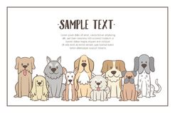 Background with Hand drawn dogs. Herd of dogs with sample text. Hand drawn illustration background. Sat dogs in front view position. Vector illustration royalty free illustration