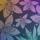 Background with hand drawn flowers Stock Photos