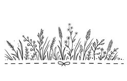 Background with hand drawn herbs and flowers Stock Images