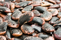 Background of haricot beans Stock Images