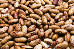 Background of haricot beans Royalty Free Stock Image