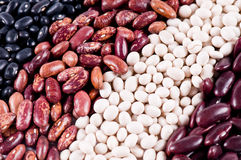 Background of haricot beans Stock Image