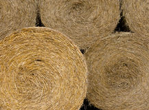 Background of hay bales royalty free stock photos
