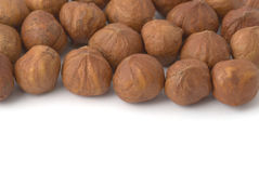 Background with haze-lnuts. Background with hazel-nuts. Copy space for your own text Stock Photo