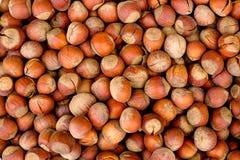 Background of the hazelnuts Stock Photo