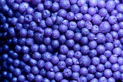 Background heap of violet small balls for bath Royalty Free Stock Photography