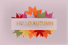 Background hello autumn. With yellow and red leaves Royalty Free Stock Photography