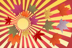 Background hello autumn. With yellow and red leaves Royalty Free Stock Photos