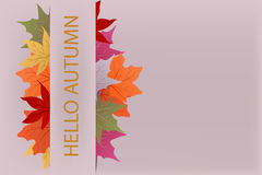 Background hello autumn. With yellow and red leaves Royalty Free Stock Photo