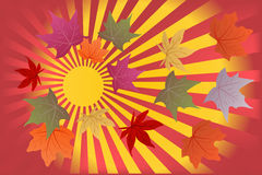 Background hello autumn. With yellow and red leaves royalty free illustration