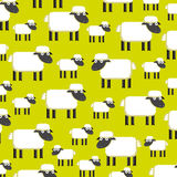 Background With A Herd Of Sheeps On A Field Royalty Free Stock Image