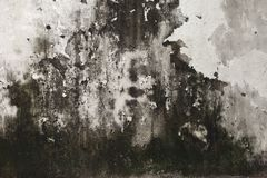 Background from high detailed fragment stone wall Royalty Free Stock Photo