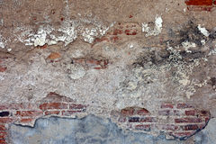 Background from high detailed fragment stone wall Royalty Free Stock Photography