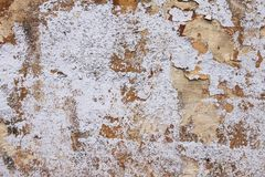 Background from high detailed fragment stone white wall stock image