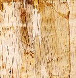 Background high resolution. High resolution. Background from an old object that is made from the bark of birch trees Royalty Free Stock Photography