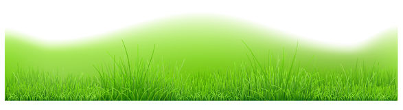 Background with hills and green grass Stock Photos