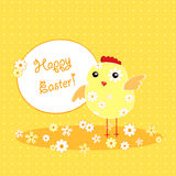 Background with holiday Easter chicken Stock Photo