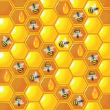 Background honey comb with bees Stock Photo