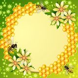 Background with honeycomb Stock Photography