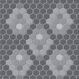The background is honeycomb. Stock Image