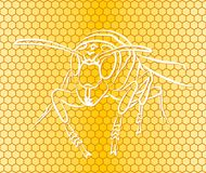 Background with honeycombs and bee. A seamless background with honeycombs and a bee Royalty Free Illustration
