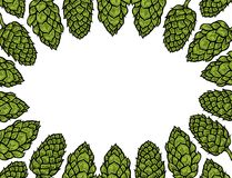 Background of Hop Royalty Free Stock Image