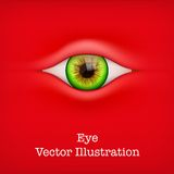 Background with human eye. Vector Illustration. Royalty Free Stock Photos