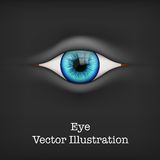 Background with human eye. Vector Illustration. Royalty Free Stock Image