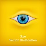 Background with human eye. Vector Illustration. Royalty Free Stock Photography