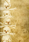 Background with human skulls and bones Royalty Free Stock Image